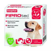 Beaphar Fiprotec Dog 4 pip - Anti vlooien en tekenmiddel - 20-40kg