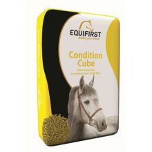 Equifirst Equifirst condition cube 4+1 GRATIS